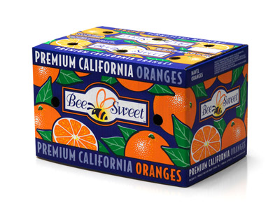 Navel Orange Carton (Fancy Grade)