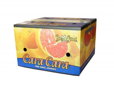 Cara Cara - Full Carton 40#