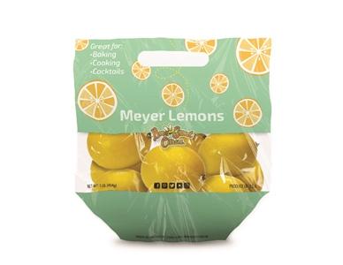 Meyer Lemon Pouch Bag - 1#