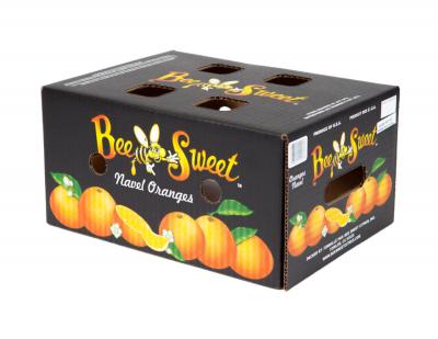 Navel Orange Carton 10# (Fancy Grade)