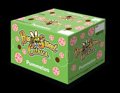 Pummelo Standard Carton - 40#